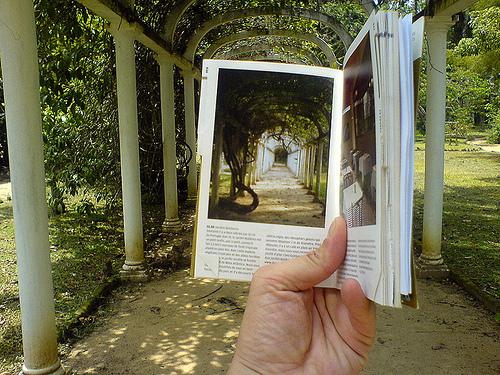 Jardim Botânico do Rio de Janeiro. Foto: Frédéric della Faille