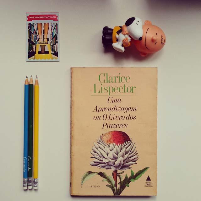 Uma aprendizagem - Clarice Lispector