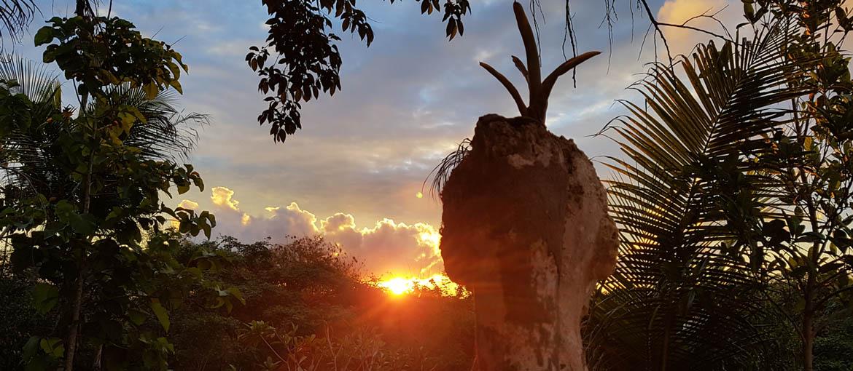 Engenho Pombal - pôr do sol